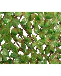 Φυλλωσιά δίχρωμη με ξύλινο πτυσσόμενο πλέγμα 100Χ200